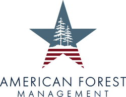 American Forest Management